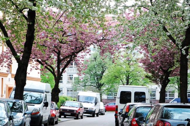 Blütenstraße