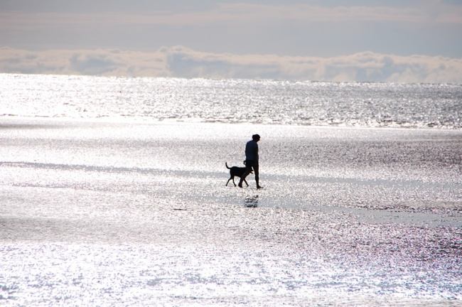 Raglan woman and dog